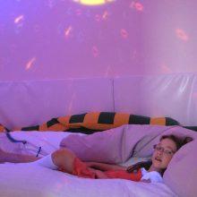 Centrum péče o handicapované ALKA, Příbram
